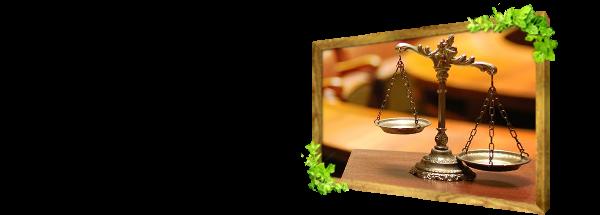 Jogi képviselet